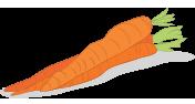 Sárgarépaolaj
